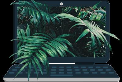 ordinateur avec feuilles